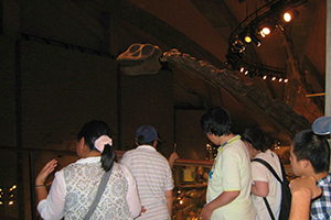県立自然史博物館見学